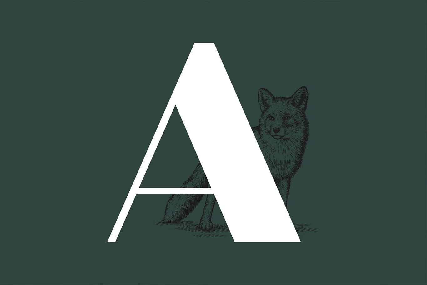 Proyecto de naming y branding para el hotel astuto Boutique
